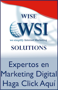 Wise WSI Solutions. Expertos en Marketing Digital