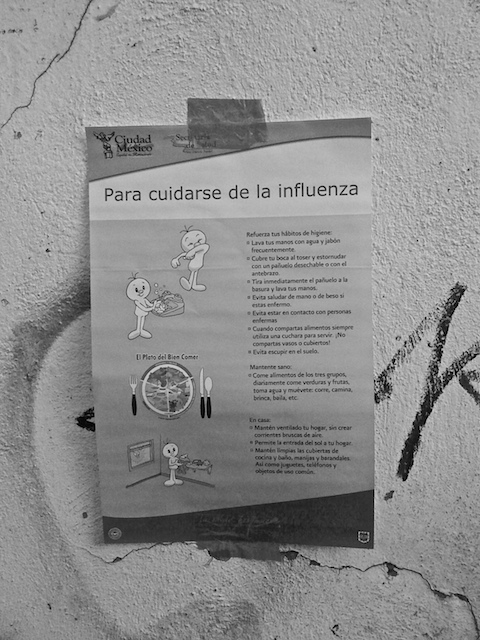Póster Influenza B/W