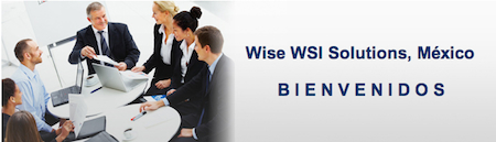 Wise WSI Solutions, México