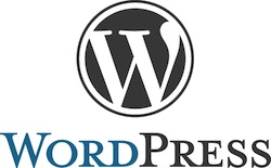 WordPress is the most successful CMS for Blogging and Internet page building.